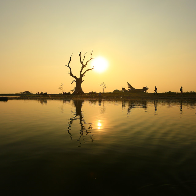 """""""silhouette if a tree at sunset at ubien bridge"""" stock image"""