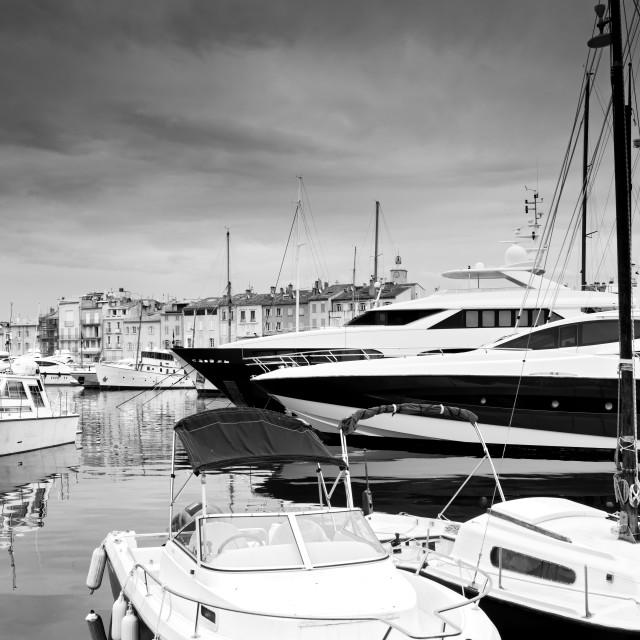 """""""Saint Tropez harbor"""" stock image"""