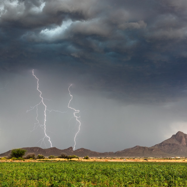 """Lightning bolts strike from a monsoon thunderstorm"" stock image"