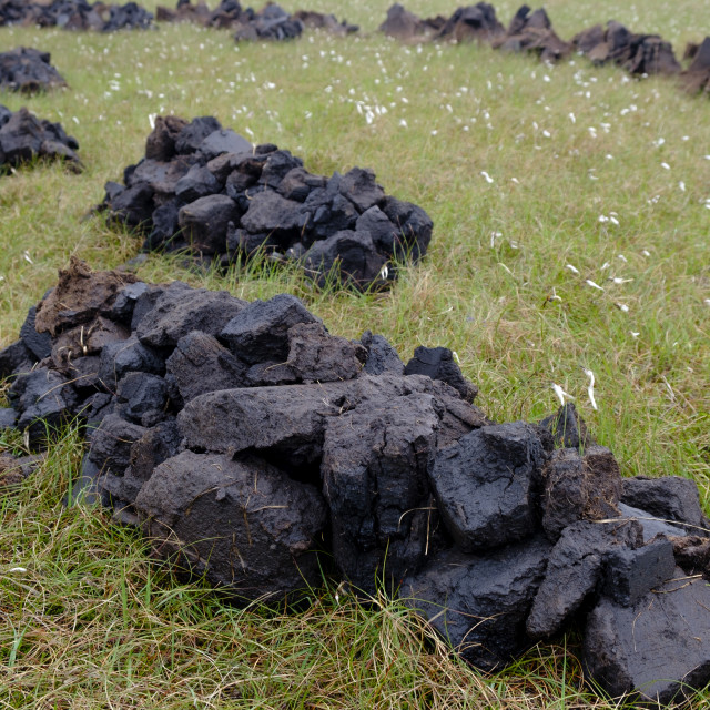 """""""Freshly cut peat stacked to dry to be used a traditional fuel in Scotland"""" stock image"""