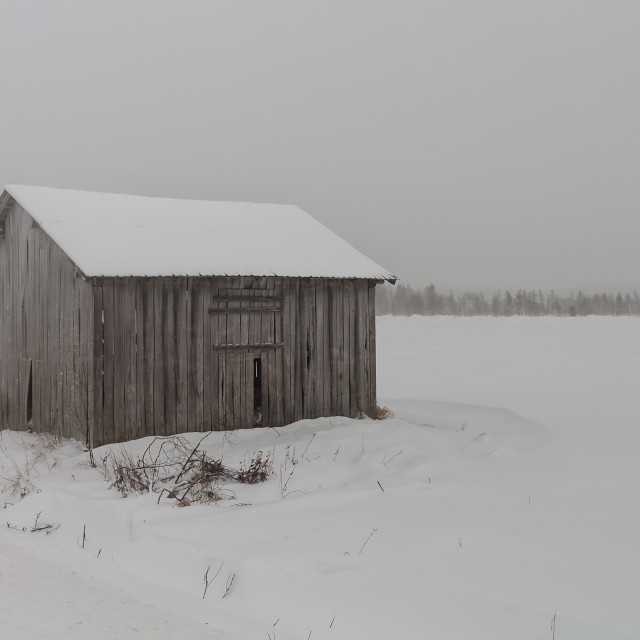 """""""Old Barn House In The Snow Storm"""" stock image"""