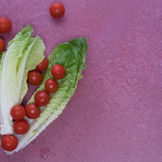 """""""lettuce and tomato"""" stock image"""