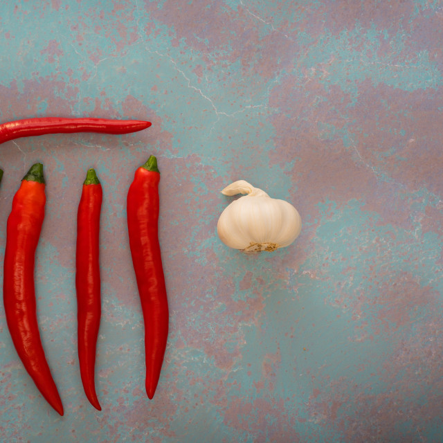 """""""red chilli and garlic"""" stock image"""
