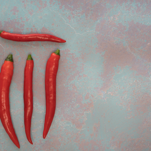 """""""red chilli"""" stock image"""