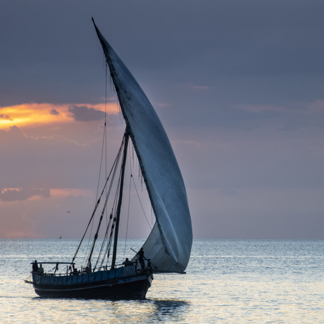 """""""Dhow"""" stock image"""