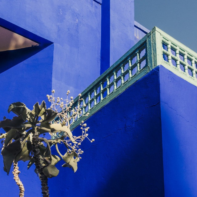 """Blue House in the Jardin Majorelle"" stock image"