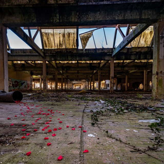 """""""Urbex photography in a former abandoned cotton mill"""" stock image"""