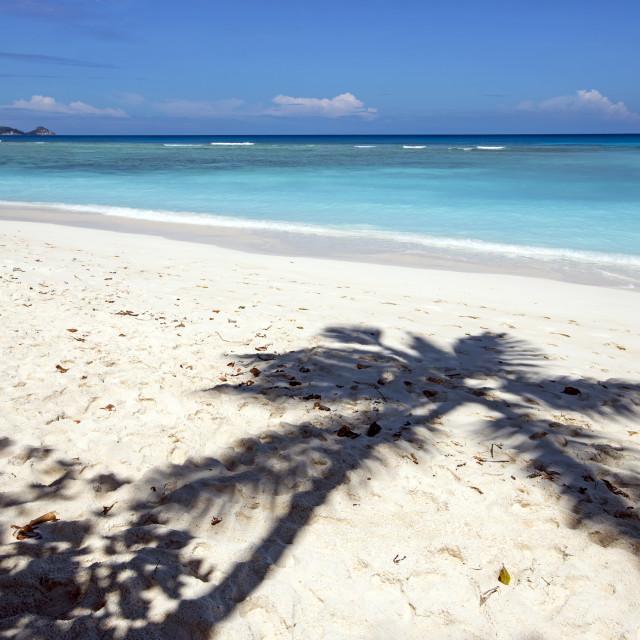 """Tropical island"" stock image"