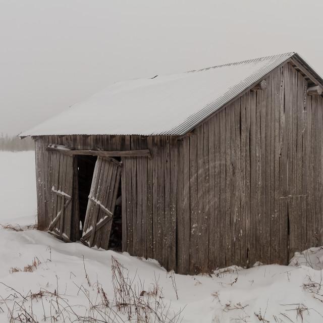"""""""Old Barn With Broken Doors"""" stock image"""