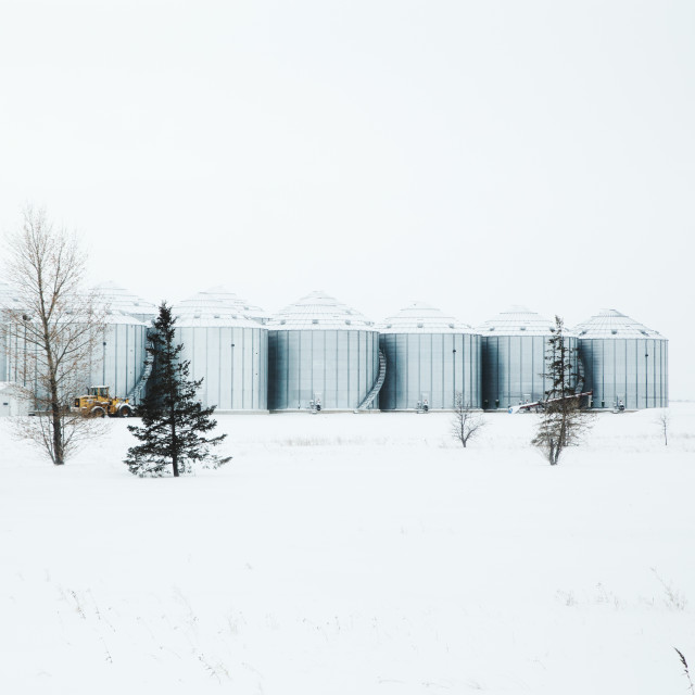 """""""A row of modern galvanized grain bins with attached stairs curving up in a deserted rural winter landscape"""" stock image"""