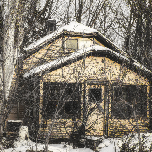 """""""A closeup of a broken and abandoned two story house surrounded by tall bare trees in a black and white winter landscape"""" stock image"""