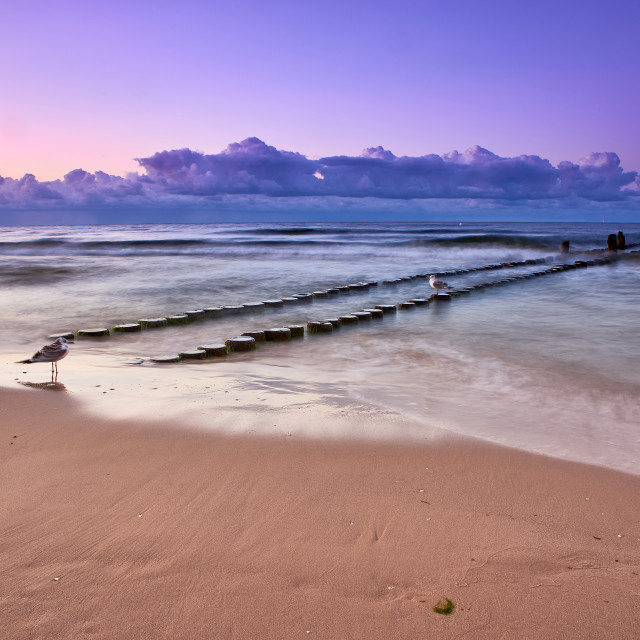 """lonely baltic beach in the evening"" stock image"