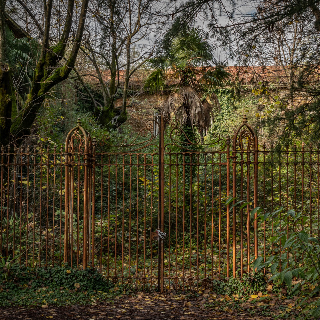 """""""Old rusty railing of an abandoned madhouse"""" stock image"""