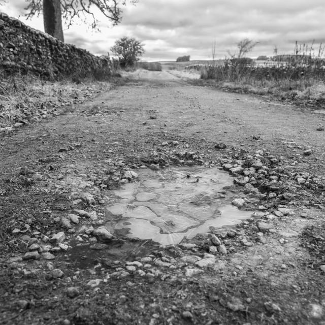 """""""Pothole Puddle"""" stock image"""