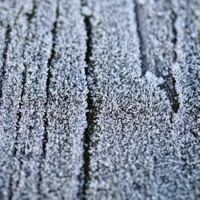 """""""snow and ice on the wooden table, white and cold days"""" stock image"""