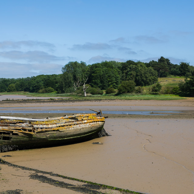 """An old wooden ship that has been wreaked and moored in the river to create a habitat for local animals"" stock image"