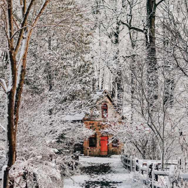 """""""Cabin covered by snow, New England USA"""" stock image"""