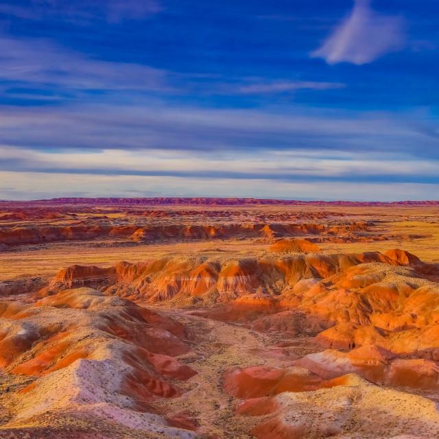 """Petrified National Park"" stock image"