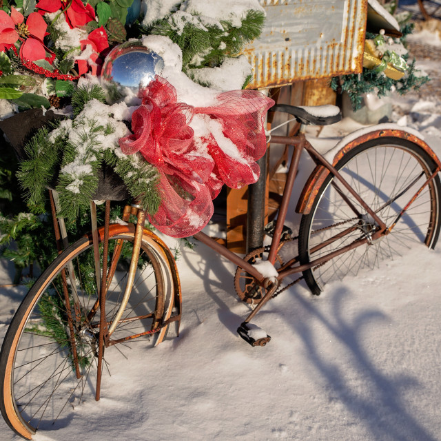 """""""A vintage rusted mens bicycle decorated with red bow and green tree branches outdoors on a snow covered ground in a Christmas landscape"""" stock image"""