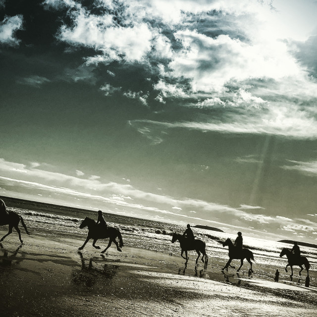 """Horses Trek on Youghal Beach"" stock image"