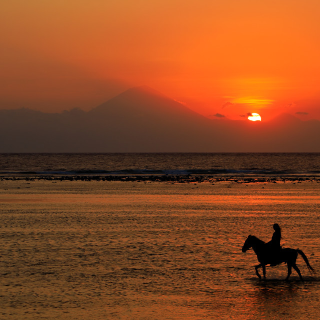 """""""Horse and rider on beach at sunset"""" stock image"""