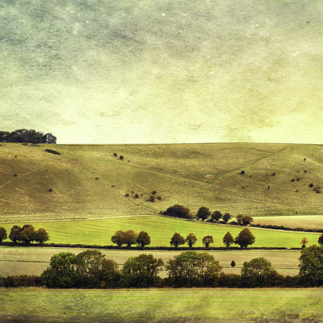 """""""The Pewsey Down Hills #6"""" stock image"""