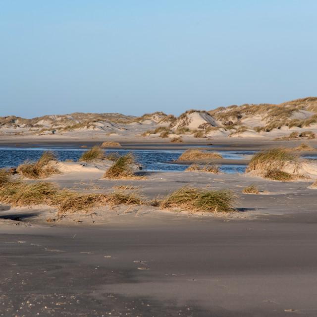 """Dunes on the North Frisian Island Amrum in Germany"" stock image"