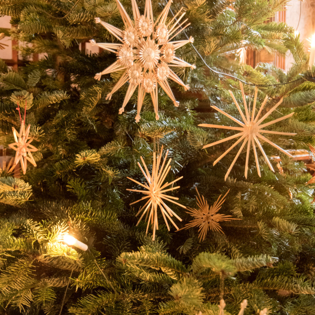 """""""Detail of a Christmas Tree"""" stock image"""