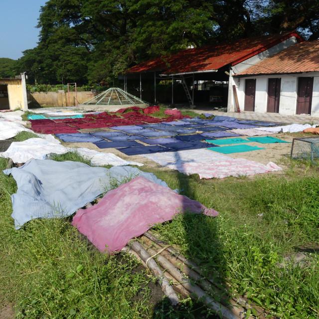 """""""Drying Laundry at Dobi Khana Laundry"""" stock image"""