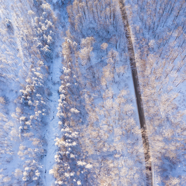 """""""Aerial view of a road in winter."""" stock image"""