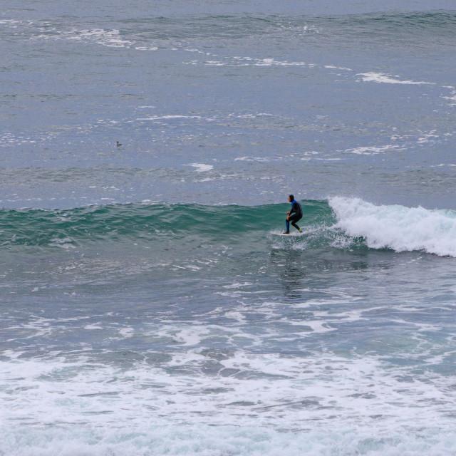 """Lone surfer freshwater west"" stock image"