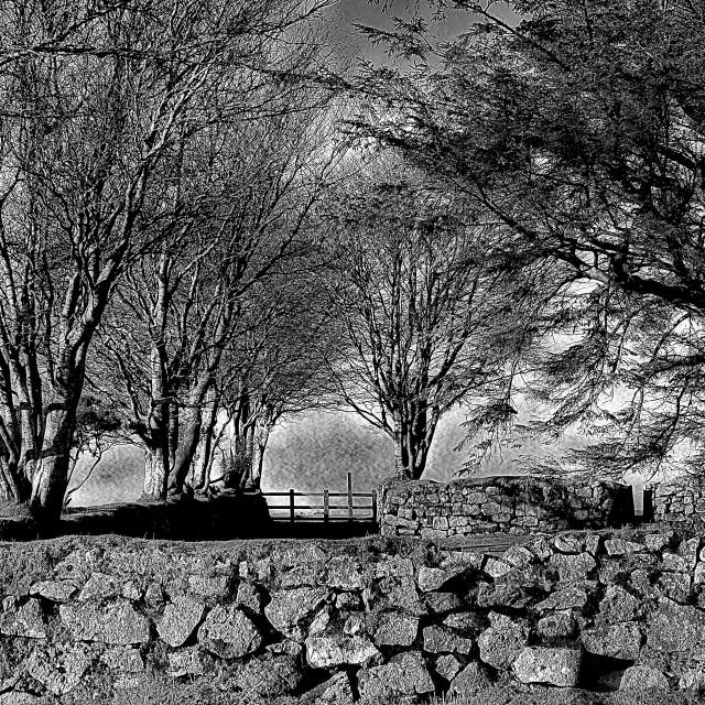 """Stone Walled Enclosure - Exmoor"" stock image"