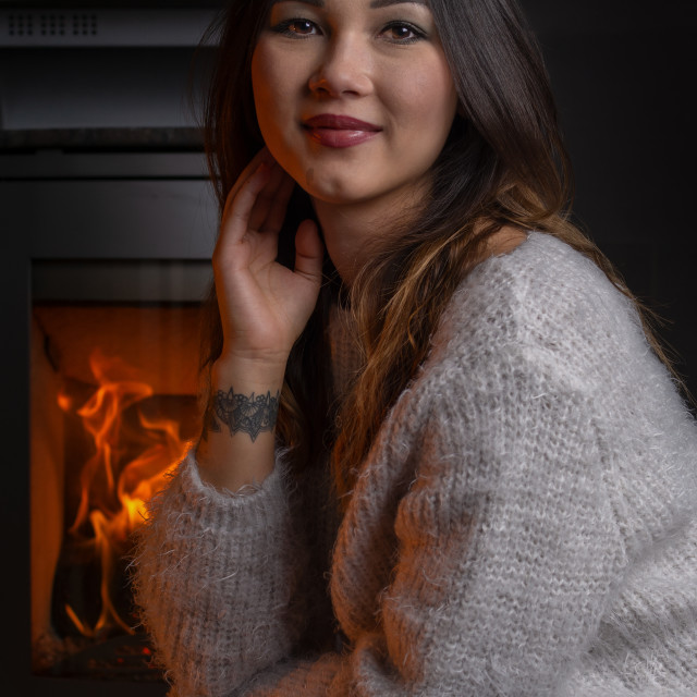 """""""warming at the fire place"""" stock image"""