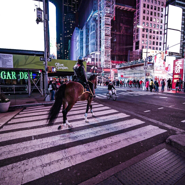 """""""Police Horse Times Square NYC"""" stock image"""