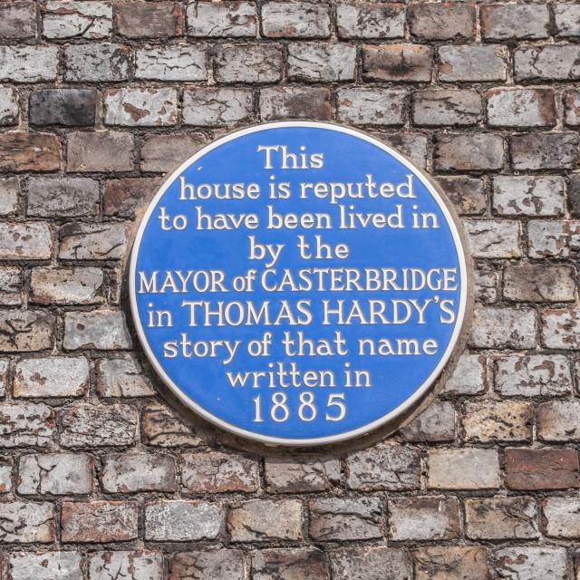 """Dorchester, Dorset, UK. July 4 201. Thomas Hardy Blue Plaque in Dorchester."" stock image"