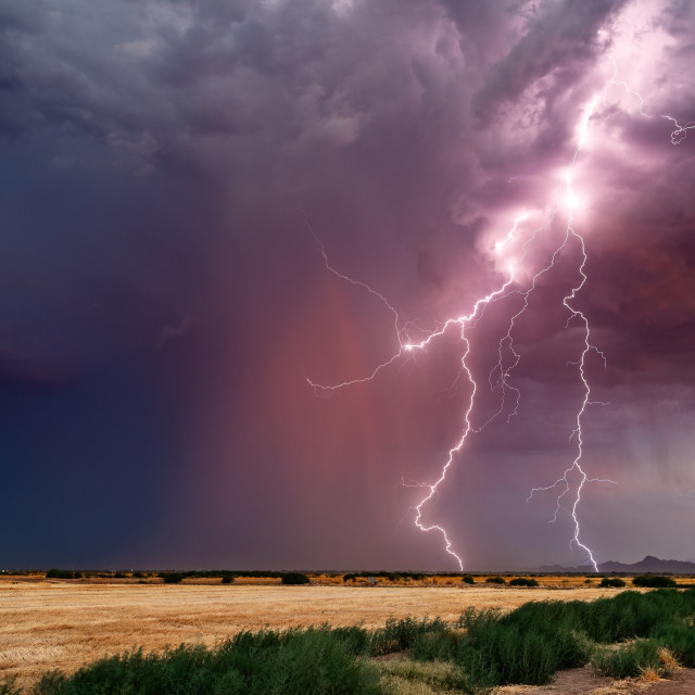 """Lightning bolts from a thunderstorm at sunset"" stock image"