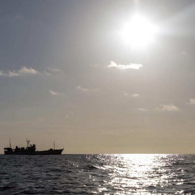 """Tuna long-liner going fishing"" stock image"