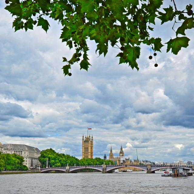 """""""View Towards The Houses Of Parliament - London"""" stock image"""