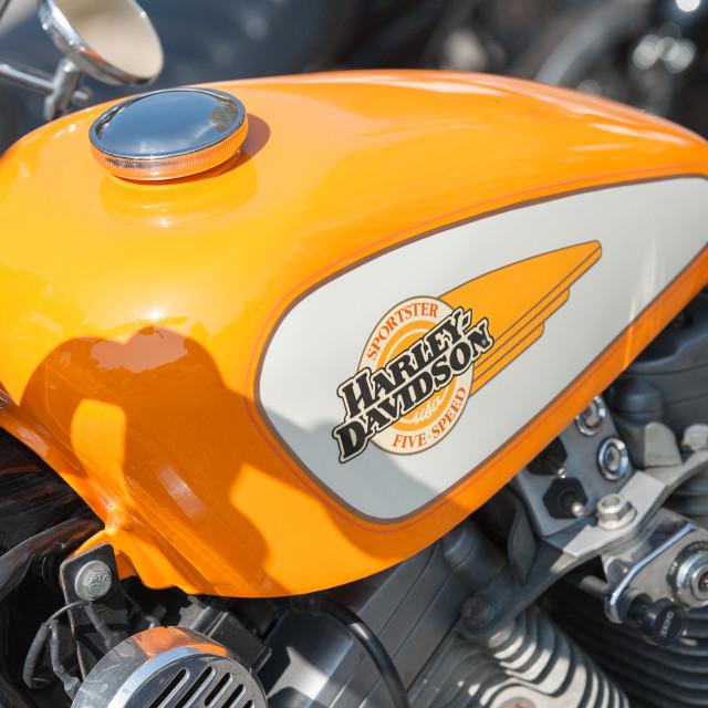 """""""Harley Davidson gas tank"""" stock image"""