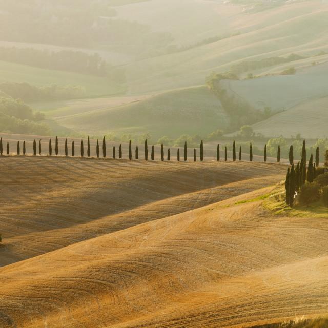 """Italy, Tuscany, Le Crete, Crete Senesi - Rolling Hills and Dunes"" stock image"