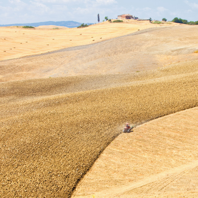 """""""Italy Tuscany Le Crete - Agriculture"""" stock image"""