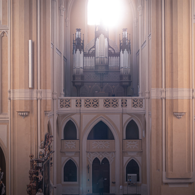 """""""Cathedral of Assumption of Our Lady and St. John the Baptist"""" stock image"""