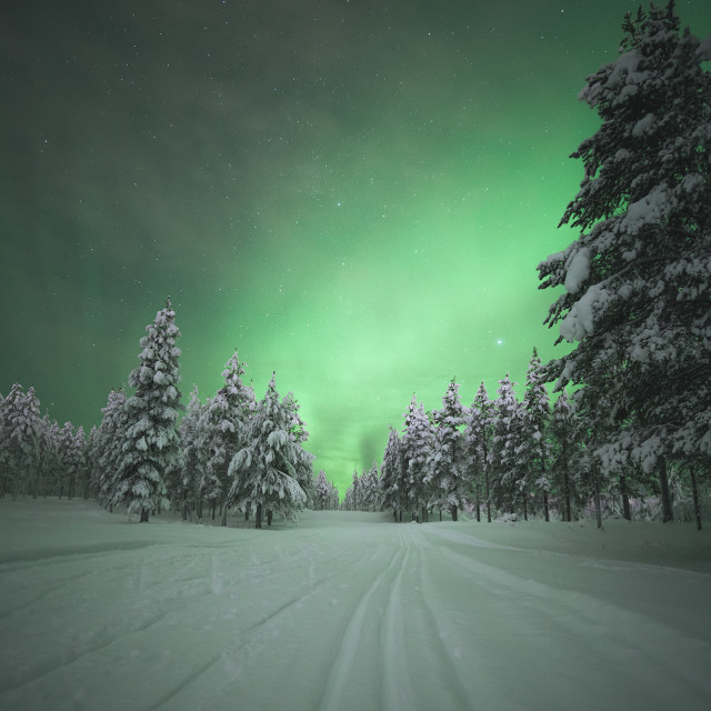 """Skiing under the Aurora Borealis"" stock image"