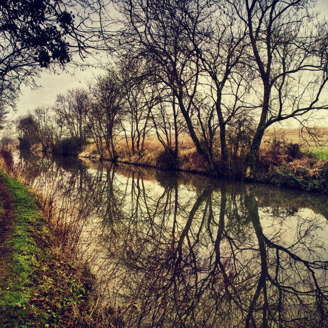 """""""Canalside Reflections #3- Milton Lilbourne, Wiltshire"""" stock image"""