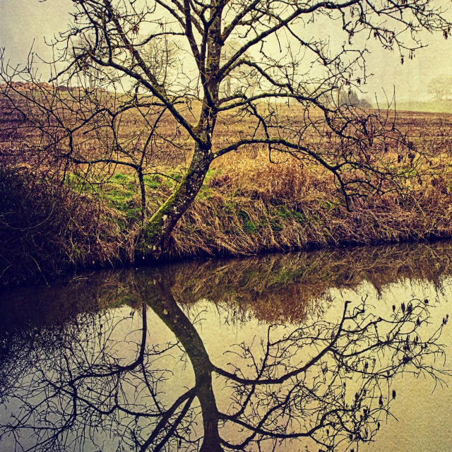 """""""Canalside Reflections #4- Milton Lilbourne, Wiltshire"""" stock image"""