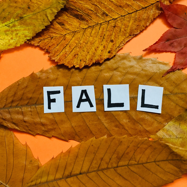 """""""Dried Autumnal leaves with the word Fall"""" stock image"""