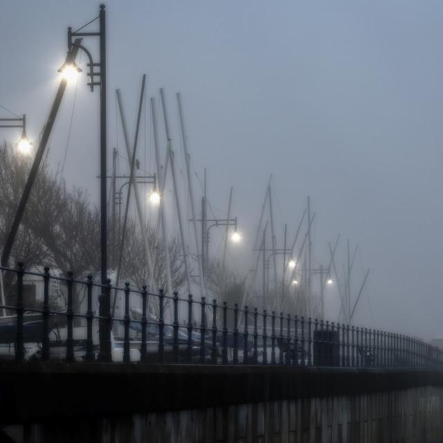 """Street lights in the mist"" stock image"