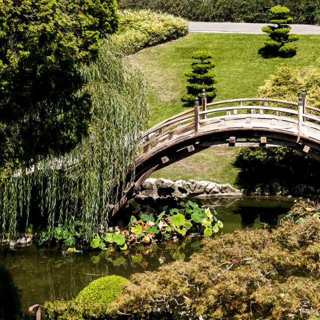 """""""Ponte no Jardim"""" stock image"""