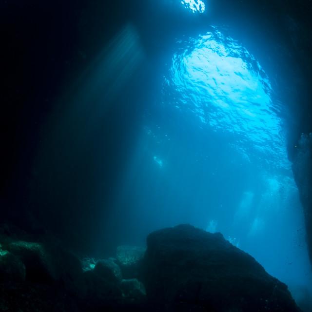 """""""Paisagem subaquática"""" stock image"""