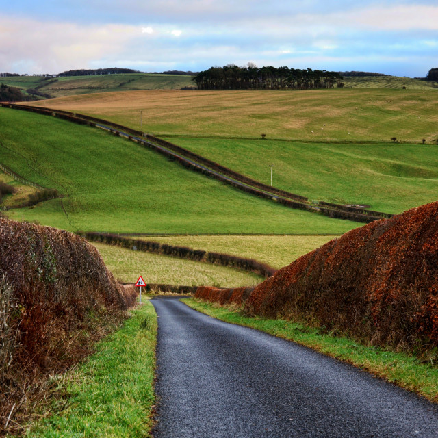 """""""Country Roads"""" stock image"""